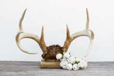 Vintage Mounted Rustic 8 Point Buck Antlers by TheRubberSol #antlers #vintage #western #rustic #decor