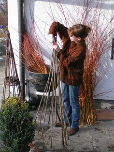 Weidenflechten leicht gemacht | Aus dem Garten