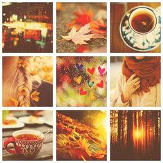 Autumn love! Autumn feeling! Absolutely amazing photos