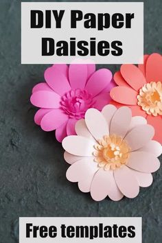 I love making this paper daisy flower plant. It was a bit challenging making these daisy templates to cut out. I've included the daisy template pdf and svg files in this tutorial. These are free printable daisy flower templates. Paper Dahlia, Paper Daisy, Easy Paper Flowers, Giant Paper Flowers, Diy Flowers, Paper Peonies, Paper Butterflies, Flower Diy, Free Paper Flower Templates