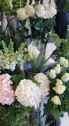 The 167 best white fresh flowers images on pinterest in 2018 the 167 best white fresh flowers images on pinterest in 2018 amazing flowers blue flowers and floral arrangements mightylinksfo