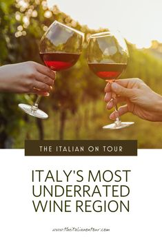 The most under-rated wine region in Italy. Discover Le Marche the wine region in Italy with the most diverse wine production and highest quality to price ratio. Italy Travel Tips, Europe Travel Guide, Travel Destinations, Regions Of Italy, Countries To Visit, Travel Advice, Travel Ideas, Group Travel, Culture Travel