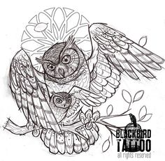 barn Owl Tattoos | owl # owlet # owl tattoo