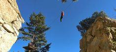 Percurso em slide por entre as copas das árvores permite conhecer Sintra numa nova perspetiva