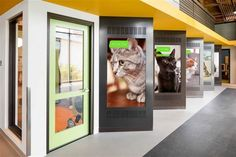 The Most Incredible Animal Shelter You Have Ever Seen - the Wallis Annenberg PetSpace.