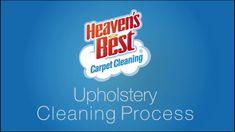 Pin By De Best Carpet On Carpet Ideas How To Clean Carpet Best