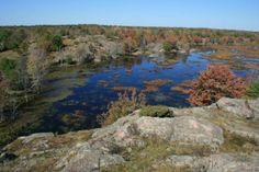 Frontenac Provincial Park Canoe, Social Studies, Ontario, Camping, River, Spaces, Park, Outdoor, Canada