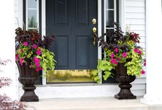 Front door ideas on pinterest planters front door Container plant ideas front door