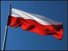 Polish flag: part Polish Haiti, Ambition, Holland, Patriots, Cool Stuff, Outdoor Decor, Polish, Radio Stations, Ww2
