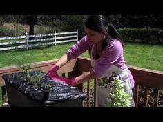 How to Plant Your Own EarthBox