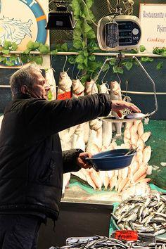 Kadı Nimet Balıkçılık: Weighting Fish,  Istambul  Turkey