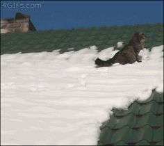 Kitty Snow Roof Slide Oh No