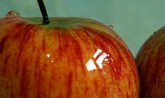 Apple fruit     http://hc.com.vn  HomeCenter  http://hc.com.vn/vien-thong.html  http://hc.com.vn/vien-thong/dien-thoai-di-dong.html