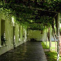 Casa Madero es Casa Madero #Parras #Coahuila #PuebloMágico #VinosDeCoahuila #Vinos #vinostagram #desert #MagicTown #Wine