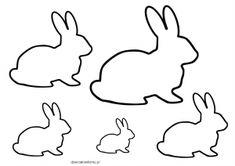 zajac szablon
