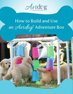 Puppy Adventure Box | Puppy Activity Box | Interactive Dog Toys | Avidog