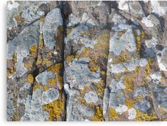 """Rock of Ages Metal Prints by Jennifer J Watson Framed Prints, Canvas Prints, Art Prints, Wester Ross, Rock Of Ages, Contemporary Photography, Contemporary Interior, Geology, Art Boards"