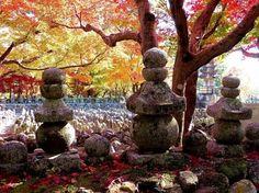 The Momiji-gari: Red Leaf Hunting in Kyoto | http://travelingdesh.com/the-momiji-gari-red-leaf-hunting-in-kyoto/