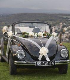 Kit mariage noeuds et ruban - drageedamour - #drageedamour #Kit #mariage #noeuds #ruban Wedding Dresses Photos, Wedding Pics, Dream Wedding, Wedding Day, Diy Summer Clothes, Summer Diy, Wedding Knot, Ribbon Wedding, Bridal Car