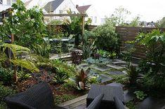 Jungle paradise backyard