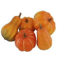 FloristryWarehouse Artificial Autumn Pumpkin selection x5 assorted Pumpkins * Visit the image link more details.