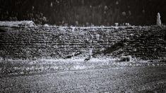 BWSTOCK.PHOTOGRAPHY  //  #sheep #hillside Black White Photos, Black And White, Railroad Tracks, Sheep, Public, Photography, Fotografia, Photograph, Black N White