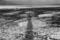 SEA LEVEL WATERLINE  DEATH VALLEY CALIFORNIA  1982  Richard Long