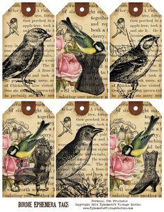 BirdieEphemeraTags.jpg (1237×1600)