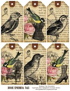 Ephemera's Vintage Garden: Weekly Free Printable - Bird Ephemera Tags