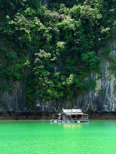 Halong Bay, Vietnam | Check out our 2015 PerryGolf Asian Golf Vacation! http://www.perrygolf.com/Asia2015