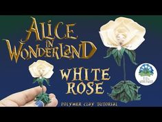 "Hello Wonderwood People! ♥ In this video I'll show you how made the singing White Rose from ""Alice in Wonderland"". ❥ Share your re-creations with me using #B..."