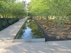 Fountain/reflecting pool at the Sunnylands Annenberg Center