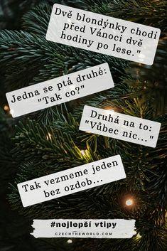 Dvě blondýnky chodí před Vánoci dvě hodiny po lese. Jedna se ptá druhé_ _Tak co__ Druhá na to __Vůbec nic..._ _Tak vezmeme jeden bez ozdob... Humor, Christmas Ornaments, Holiday Decor, Xmas Ornaments, Humour, Christmas Jewelry, Moon Moon, Funny Humor, Christmas Baubles