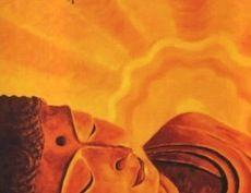 Imparare a Volare con l'Anima. L'uscita dal corpo come esperienza personale    Imparare a Volare con l'Anima23 febbraio 2013    Imparare a Volare con l'Anima  L'uscita dal corpo come esperienza personale    presso Gli Archi (Centro Congressi), Largo Santa Lucia Filippini 20, Roma.    gli orari del seminario:  sabato 23 febbraio 9,30 – 18,00 circa