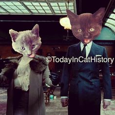 "@todayincathistory's photo: ""Happy Birthday Colin Firthcat! Born today in cat history, September 10, 1960. Image one of two (sometimes the Instagram 'square' just ain't enough!). Featuring, appropriately, England's very own cats from @garfield_nermal! Helena Bonham Carter Cat on the left as the purebred Queen Elizabeth (mother of today's Queen Elizabeth II) and Colin Firthcat on the right as King George Cat VI. #cat"