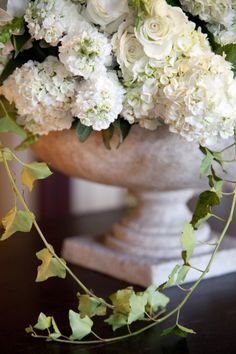 White Hydrangeas for wedding at the chateau Beautiful Flower Arrangements, Floral Arrangements, Beautiful Flowers, Fresh Flowers, White Flowers, White Hydrangeas, My Flower, Flower Power, Floral Wedding