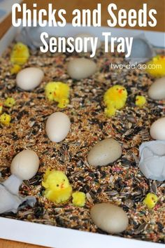 This easy sensory tray is a great farm activity for toddlers and preschoolers and is great for pretend play, fine motor skills, and language development!