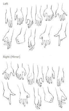 Left and right hands