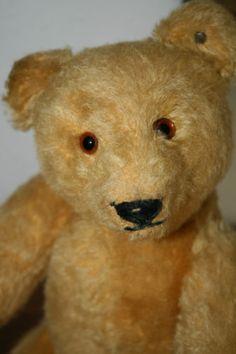 Steiff Vorkrieg Teddybär mit ff-Knopf • 35 cm • 1934-43 • Teddy Bear