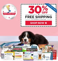 photo relating to Trifexis Printable Coupon known as 37 Excellent Help save! 1800PetMeds Product sales Offers photos within just 2019