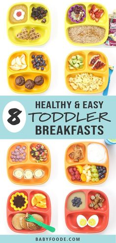 love these 8 Healthy Toddler Breakfasts ideas! They're fast, easy, and healthy, filled with protein, fiber and other essential vitamins and minerals for growing toddlers! These healthy breakfast ideas will keep your toddler happy and full all morning! Healthy Toddler Breakfast, Healthy Toddler Meals, Toddler Lunches, Healthy Kids, Kids Meals, Toddler Food, Breakfast Ideas For Toddlers, Toddler Plates, Snacks For Toddlers
