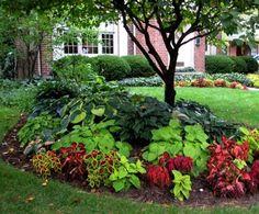 Colorful shade garden, wish I had more shade...