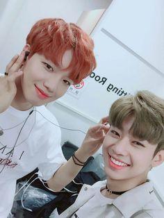 Im Youngmin, Produce 101 Season 2, Korean Group, Kpop Boy, Kpop Groups, Music Awards, Future Husband, New Music, Dumb And Dumber