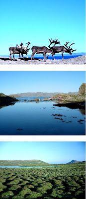 Proche du Cap Nord Europe, Cap, Mountains, Nature, Travel, Italy, Vacation, Baseball Hat, Naturaleza