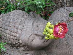 reclining buddha, Royal Palace, Cambodia   Flickr - Photo Sharing!