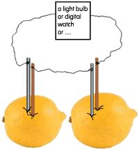 Lemon Battery Science Fair Project?