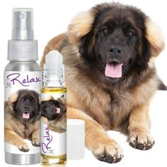 LEONBERGER RELAX DOG AROMATHERAPY Handcrafted, All Natural Calming Stress Relief for Your Dog