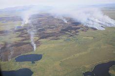 Pockets of smoke, backing fire, and burned areas Alaska Fire Service Photo
