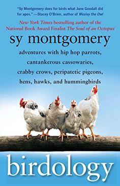 Birdology: Adventures with Hip Hop Parrots Cantankerous Cassowaries Crabby Crows Peripatetic Pigeons Hens Hawks and Humming by Sy Montgomery Paperback I Love Books, Good Books, Books To Read, Baby Hummingbirds, Bird Book, National Book Award, Pigeon, Bestselling Author, Nonfiction