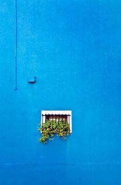 window box on blue